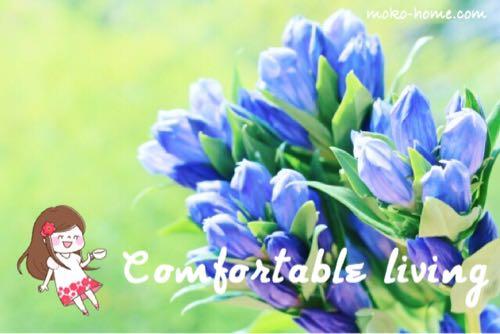 快適をイメージする花の写真