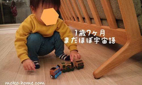 【1歳半健診】言葉なし・指差しできず引っかかる|内容と要観察になった例
