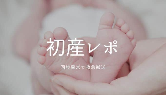 初産レポート