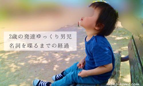 【2歳】言葉がでる前兆は?発達ゆっくりな息子がついに名詞を喋った