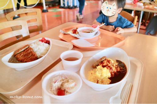 東条湖おもちゃ王国|お子様ランチ|ブログ