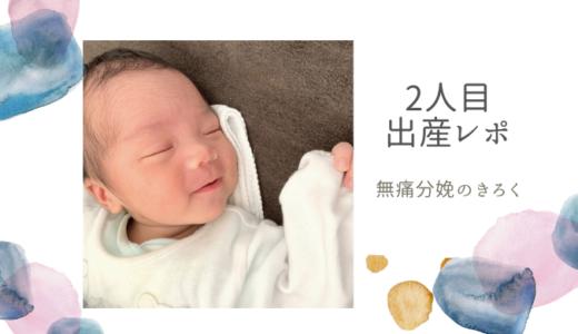 【出産体験談】2人目は無痛分娩でスピード安産だった|レポートブログ