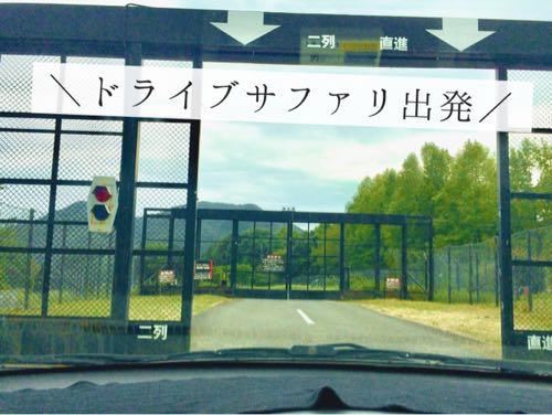 姫路セントラルパークのドライブサファリのゲートが開く様子