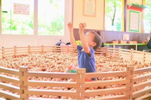 東条湖おもちゃ王国の木のおもちゃ館