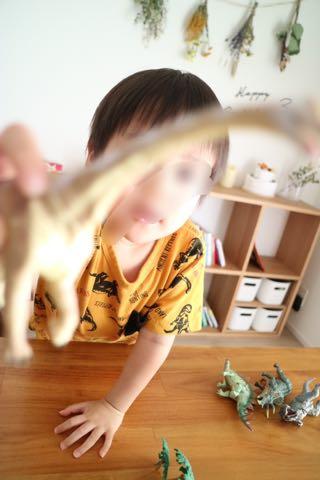 リアルな恐竜フィギュアセットであそぶ3歳児